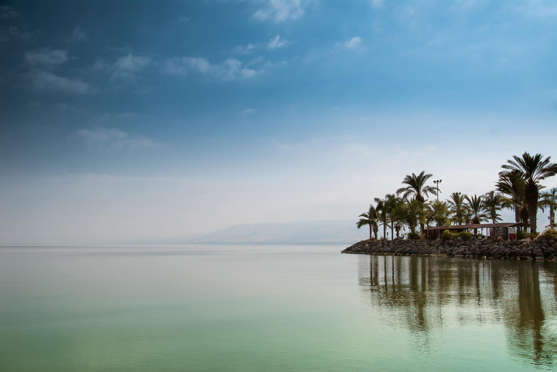 חוף התכלת